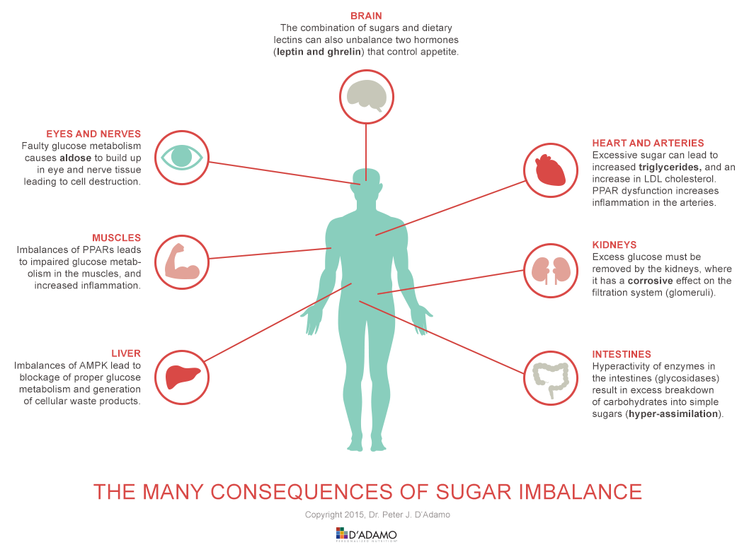 Fructose and the Brain: Fructose May Not Make You Feel Full